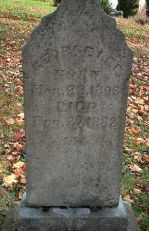 LEE, GEORGE - Meigs County, Ohio | GEORGE LEE - Ohio Gravestone Photos
