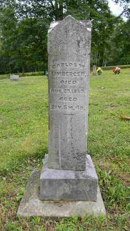 LIMBERGER, CARLOS W. - Meigs County, Ohio | CARLOS W. LIMBERGER - Ohio Gravestone Photos