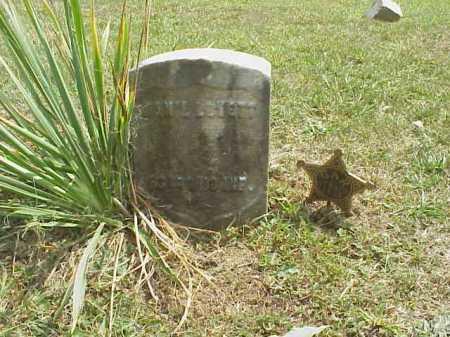 LOVETT, DAN'L - Meigs County, Ohio | DAN'L LOVETT - Ohio Gravestone Photos