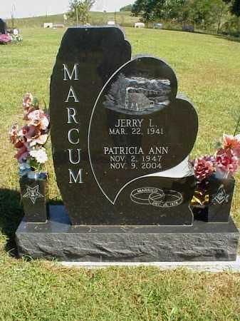 MARCUM, PATRICIA ANN - Meigs County, Ohio | PATRICIA ANN MARCUM - Ohio Gravestone Photos