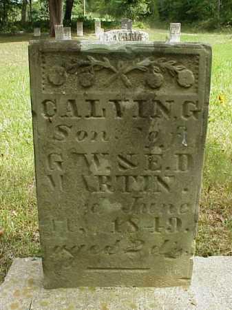MARTIN, CALVIN G. - Meigs County, Ohio   CALVIN G. MARTIN - Ohio Gravestone Photos