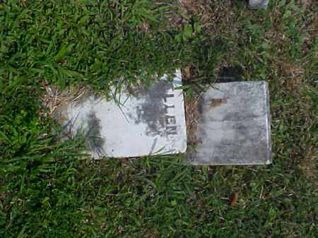 MARTIN, ELLEN - Meigs County, Ohio | ELLEN MARTIN - Ohio Gravestone Photos