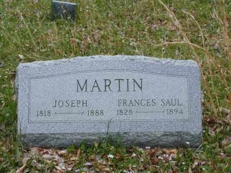 MARTIN, FRANCES - Meigs County, Ohio | FRANCES MARTIN - Ohio Gravestone Photos