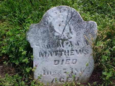 MATTHEWS, CASCIUS - Meigs County, Ohio   CASCIUS MATTHEWS - Ohio Gravestone Photos