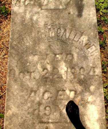 MCALLISTER, ANNIE C. - Meigs County, Ohio | ANNIE C. MCALLISTER - Ohio Gravestone Photos
