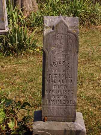 MCCALLA, BRICE L. - Meigs County, Ohio | BRICE L. MCCALLA - Ohio Gravestone Photos