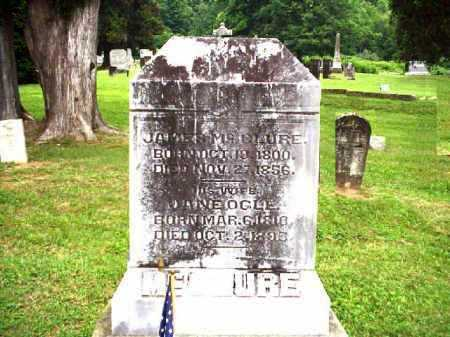 OGLE MCCLURE, JANE - Meigs County, Ohio | JANE OGLE MCCLURE - Ohio Gravestone Photos