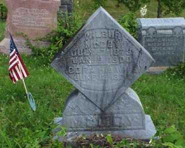MCCOY, WILBUR - Meigs County, Ohio | WILBUR MCCOY - Ohio Gravestone Photos