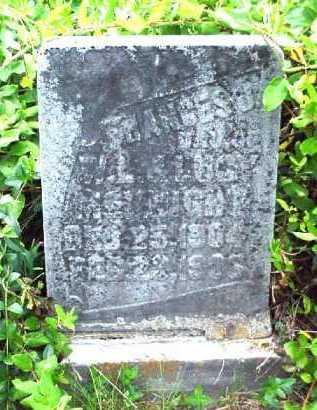 MCKNIGHT, FRANCES - Meigs County, Ohio | FRANCES MCKNIGHT - Ohio Gravestone Photos