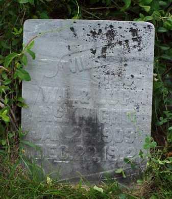 MCKNIGHT, WILLIAM P. - Meigs County, Ohio | WILLIAM P. MCKNIGHT - Ohio Gravestone Photos