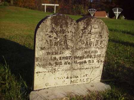 MEALEY, DAVID B. - Meigs County, Ohio | DAVID B. MEALEY - Ohio Gravestone Photos