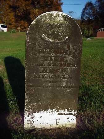 MEALEY, GEORGE - Meigs County, Ohio | GEORGE MEALEY - Ohio Gravestone Photos