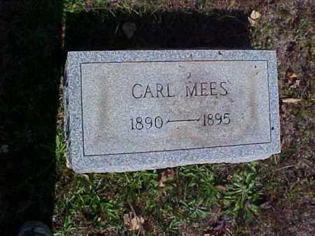 MEES, CARL - Meigs County, Ohio | CARL MEES - Ohio Gravestone Photos