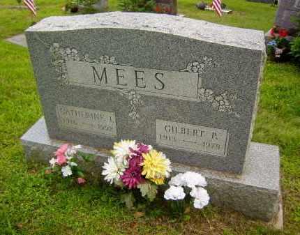 MEES, GILBERT P. - Meigs County, Ohio | GILBERT P. MEES - Ohio Gravestone Photos