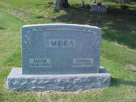 MEES, JACOB - Meigs County, Ohio | JACOB MEES - Ohio Gravestone Photos