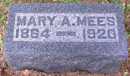 MEES, MARY A. - Meigs County, Ohio | MARY A. MEES - Ohio Gravestone Photos