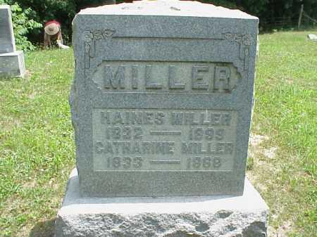 MILLER, HAINES - Meigs County, Ohio   HAINES MILLER - Ohio Gravestone Photos