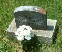 MILLER, HARRY - Meigs County, Ohio | HARRY MILLER - Ohio Gravestone Photos