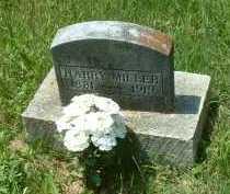 MILLER, HARRY - Meigs County, Ohio | HARRY MILLER - Ohio Gravestone Photos