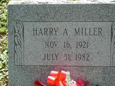 MILLER, HARRY A. - Meigs County, Ohio | HARRY A. MILLER - Ohio Gravestone Photos