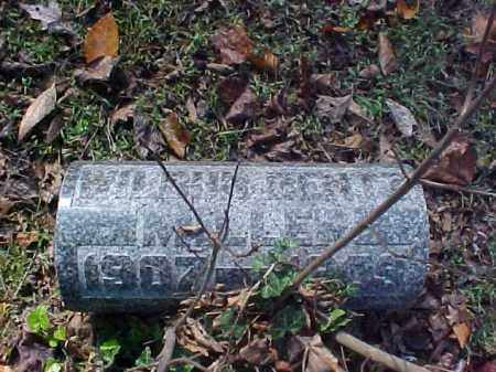 MILLER, WILBUR BENTZ - Meigs County, Ohio | WILBUR BENTZ MILLER - Ohio Gravestone Photos