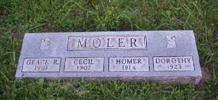 MOLER, DOROTHY - Meigs County, Ohio | DOROTHY MOLER - Ohio Gravestone Photos