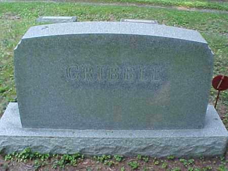 MONUMENT, GRIBBLE - Meigs County, Ohio | GRIBBLE MONUMENT - Ohio Gravestone Photos