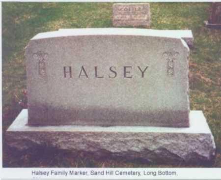 MONUMENT, HALSEY - Meigs County, Ohio | HALSEY MONUMENT - Ohio Gravestone Photos