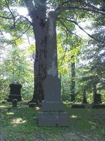 MONUMENT, REMINGTON - Meigs County, Ohio | REMINGTON MONUMENT - Ohio Gravestone Photos