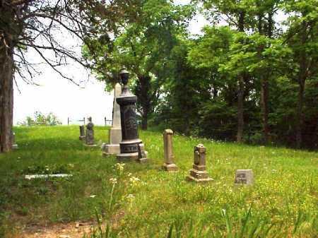 MONUMENTS, LONGSTRETH CEMETERY - Meigs County, Ohio | LONGSTRETH CEMETERY MONUMENTS - Ohio Gravestone Photos