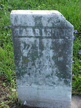 MOORE, HARRIET J. - Meigs County, Ohio | HARRIET J. MOORE - Ohio Gravestone Photos