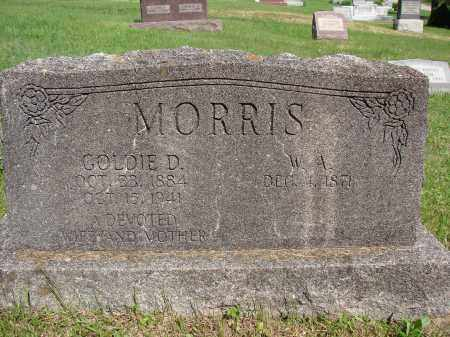 SHEETS MORRIS, GOLDIE D - Meigs County, Ohio | GOLDIE D SHEETS MORRIS - Ohio Gravestone Photos