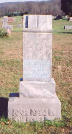 MORRISON, JAMES W. - Meigs County, Ohio   JAMES W. MORRISON - Ohio Gravestone Photos