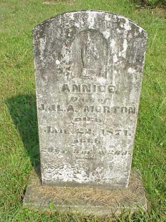 MORTON, ANNICE - Meigs County, Ohio | ANNICE MORTON - Ohio Gravestone Photos