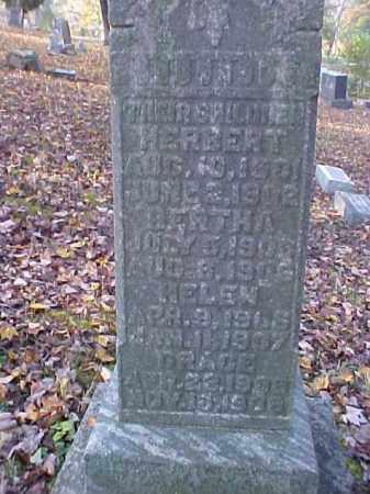 MORTON, HERBERT - Meigs County, Ohio | HERBERT MORTON - Ohio Gravestone Photos