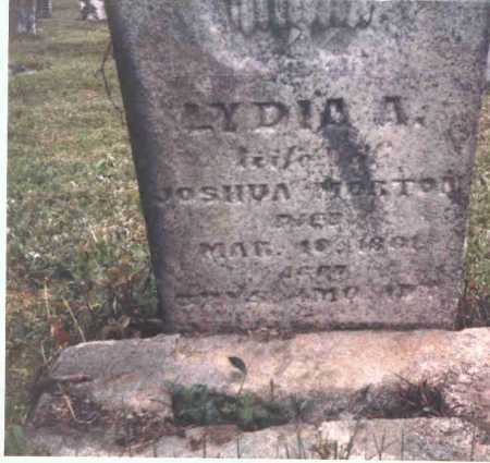 CHAMBERLAIN MORTON, LYDIA A. - Meigs County, Ohio | LYDIA A. CHAMBERLAIN MORTON - Ohio Gravestone Photos