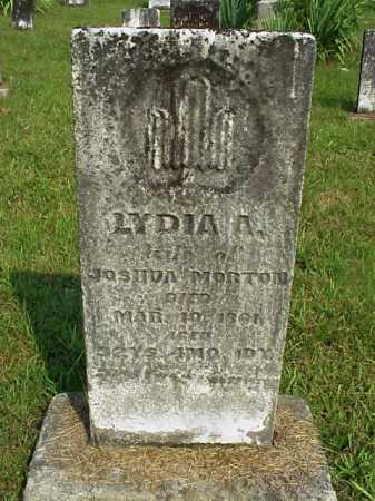 MORTON, LYDIA A. - Meigs County, Ohio | LYDIA A. MORTON - Ohio Gravestone Photos