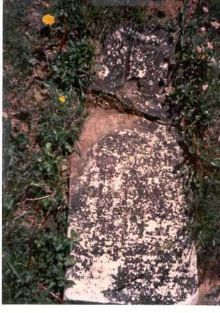 MORTON, SARAH ANN - Meigs County, Ohio | SARAH ANN MORTON - Ohio Gravestone Photos