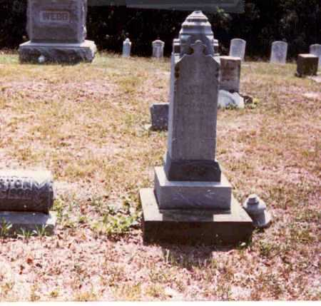 MORTON, SAMUEL - Meigs County, Ohio | SAMUEL MORTON - Ohio Gravestone Photos