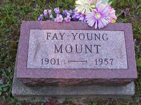 YOUNG MOUNT, FAY - Meigs County, Ohio | FAY YOUNG MOUNT - Ohio Gravestone Photos