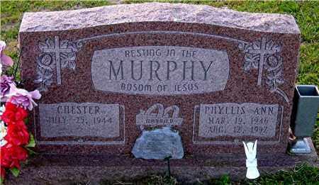 MURPHY, PHYLLIS ANN - Meigs County, Ohio | PHYLLIS ANN MURPHY - Ohio Gravestone Photos