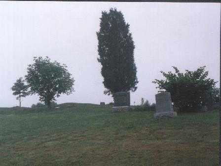 MURRAY, ARTHUR - Meigs County, Ohio | ARTHUR MURRAY - Ohio Gravestone Photos
