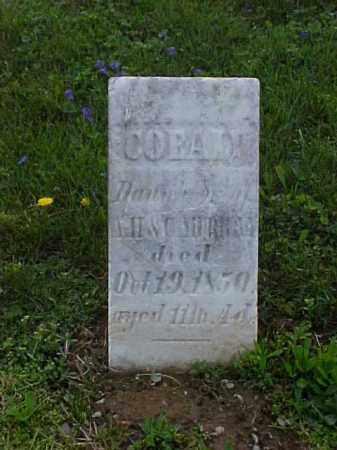 MURRAY, COEALY - Meigs County, Ohio | COEALY MURRAY - Ohio Gravestone Photos