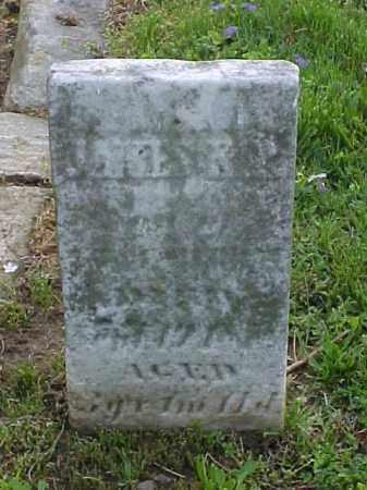 MURRAY, JAMES A. P. - Meigs County, Ohio | JAMES A. P. MURRAY - Ohio Gravestone Photos