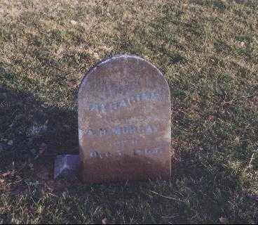 MURRAY, KATHRINE - Meigs County, Ohio | KATHRINE MURRAY - Ohio Gravestone Photos