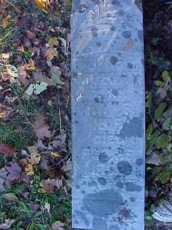 MURRAY, RUFUS P. - Meigs County, Ohio   RUFUS P. MURRAY - Ohio Gravestone Photos