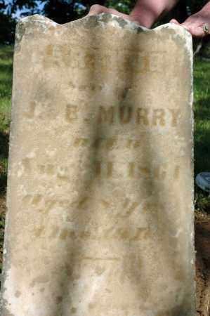MURRY, ARTHUR - Meigs County, Ohio | ARTHUR MURRY - Ohio Gravestone Photos