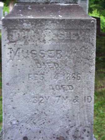 MUSSER, JOHN WESLEY - Meigs County, Ohio | JOHN WESLEY MUSSER - Ohio Gravestone Photos