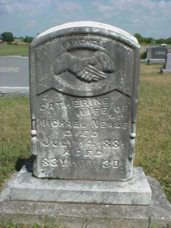 NEASE, CATHERINE - Meigs County, Ohio   CATHERINE NEASE - Ohio Gravestone Photos