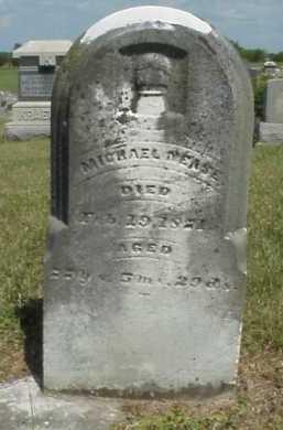 NEASE, MICHAEL - Meigs County, Ohio | MICHAEL NEASE - Ohio Gravestone Photos